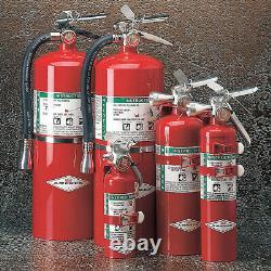 Amerex A384t Fire Extinguisher, 1BC, Halotron, 1.4063 Lb